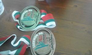 medali-taeklondo-amalia